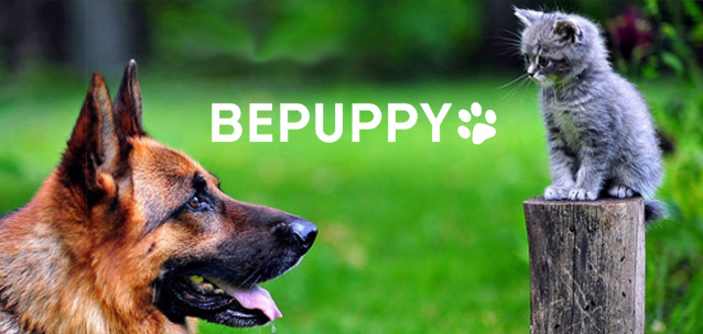 "BEPUPPY - il ""Pet Social Network"" su iPhone e Android"