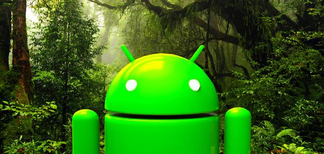 Le migliori applicazioni Android per identificare le piante